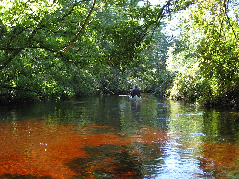 Photo Gallery – Wood-Pawcatuck Wild and Scenic Rivers  River