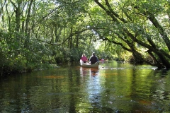 Paddling-the-upper-Wood-River