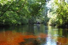 Upper-Wood-River-Paddle